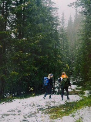 Tur i skogen_2048